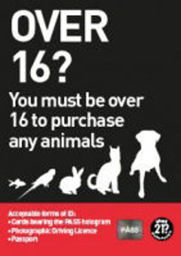 Picture of Over 16 To Purchase Any Animal