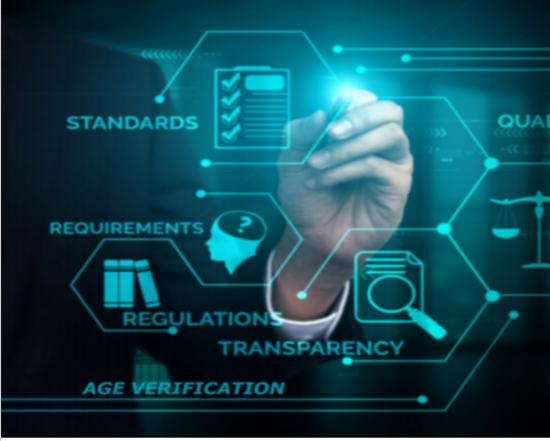 Picture of Age Verification Regulatory Sandbox Scoping Day